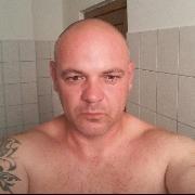 bewidog, 41